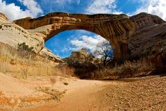 Ponte de Kachina Imagem de Stock