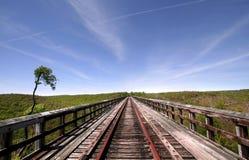 Ponte de Kinzua imagens de stock royalty free