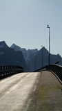 Ponte de Lofoten Imagem de Stock