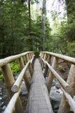 Ponte de log de madeira através de uma angra Imagens de Stock