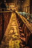 Ponte de Lviv Fotos de Stock Royalty Free