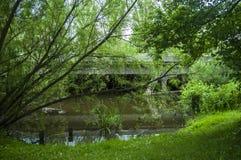 Ponte de macaco para pedestres e motociclistas ao lado do rio Imagens de Stock