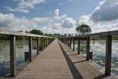 Ponte de madeira. Imagem de Stock Royalty Free