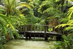 Ponte de madeira imagem de stock royalty free