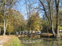 A ponte de madeira Fotos de Stock Royalty Free