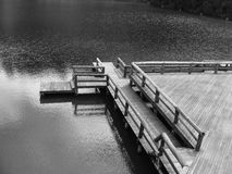 Ponte de madeira Imagens de Stock
