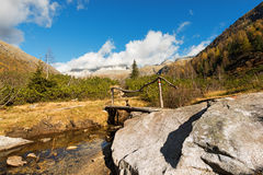 Ponte de madeira - Adamello Trento Itália Fotos de Stock