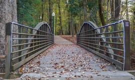 Ponte de madeira aparada luz na fuga do parque Fotos de Stock
