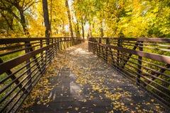 Ponte de madeira através de Autumn Woods Imagens de Stock Royalty Free