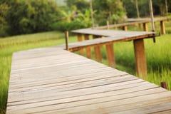 Ponte de madeira, Chiangrai Tailândia Fotos de Stock Royalty Free