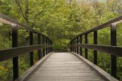 Ponte de madeira da natureza Imagens de Stock