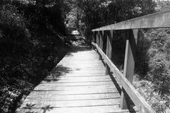 Ponte de madeira em Ngong Ping Trail, ilha de Lautau fotos de stock royalty free