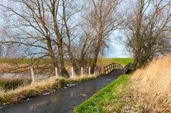 Ponte de madeira em uma paisagem outonal Imagens de Stock