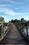 Ponte de madeira no delta de Danúbio Imagens de Stock