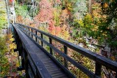 Ponte de madeira no outono Imagem de Stock