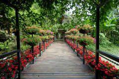 A ponte de madeira no parque Imagens de Stock Royalty Free