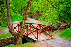 Ponte de madeira no parque frondoso verde fotos de stock royalty free