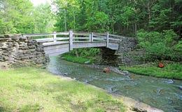Ponte de madeira no SP rochoso do ribeiro Imagem de Stock