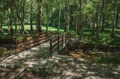 Ponte de madeira sobre o córrego em um bosque frondoso foto de stock royalty free