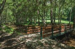 Ponte de madeira sobre o c?rrego em um bosque frondoso foto de stock