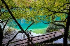 Ponte de madeira sobre o lago claro azul com uma sombra das árvores ao redor imagem de stock royalty free
