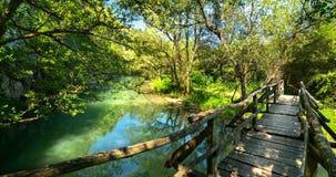 Ponte de madeira sobre o rio Fotografia de Stock Royalty Free