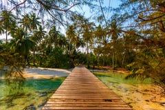 Ponte de madeira Imagens de Stock Royalty Free