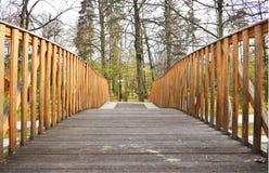 Ponte de madeira velha na floresta profunda, fundo natural do vintage fotografia de stock