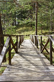 Ponte de madeira velha na natureza Imagem de Stock Royalty Free