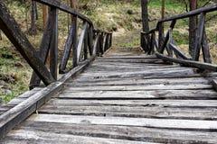 Ponte de madeira velha na natureza Fotos de Stock Royalty Free