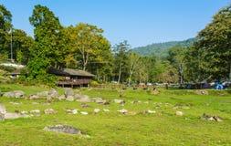 Ponte de madeira velha no campo de grama verde Fotografia de Stock Royalty Free