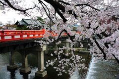 Ponte de Nakabashi, Takayama, Japão Imagens de Stock
