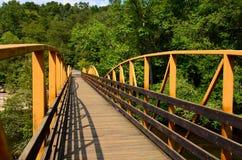 Ponte de passeio sobre o rio nas madeiras Foto de Stock Royalty Free