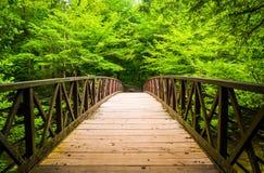Ponte de passeio sobre um córrego, no nacional de Great Smoky Mountains Fotos de Stock