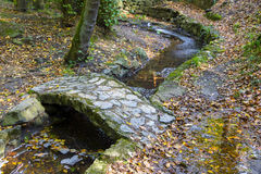 Ponte de pedra na floresta natural na estação do outono Fotografia de Stock Royalty Free