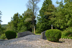 Ponte de pedra pequena com arbustos Fotografia de Stock