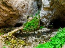 Ponte de pedra pequena em Rakov Skocjan fotografia de stock royalty free