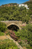 Ponte de pedra pitoresca nas flores na ilha de Andros, Fotografia de Stock Royalty Free