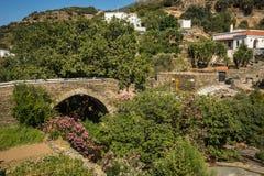 Ponte de pedra pitoresca nas flores na ilha de Andros, Imagens de Stock Royalty Free