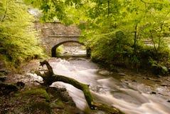 Ponte de pedra sobre o rio Roddlesworth foto de stock royalty free