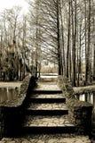 Ponte de pedra velha do pé - conduza a maneira - Sepia fotos de stock royalty free