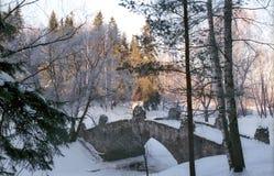Ponte de pedra velha no parque do inverno Fotos de Stock