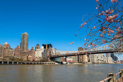 A ponte de Queensboro Foto de Stock Royalty Free