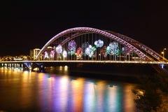 Ponte de Rosa Fotografia de Stock