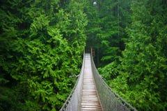 Ponte de suspensão Imagens de Stock Royalty Free