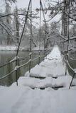 A ponte de suspensão. fotos de stock royalty free