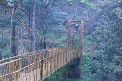 Ponte de suspensão Imagens de Stock