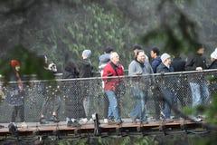 Ponte de suspensão de Capilano imagens de stock