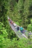 Ponte de suspensão de Capilano Imagens de Stock Royalty Free