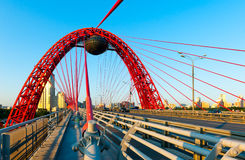 Ponte de suspensão de Zhivopisny Foto de Stock